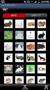 かわいい小動物図鑑- screenshot thumbnail