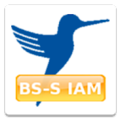 BS-S IAM for SAP