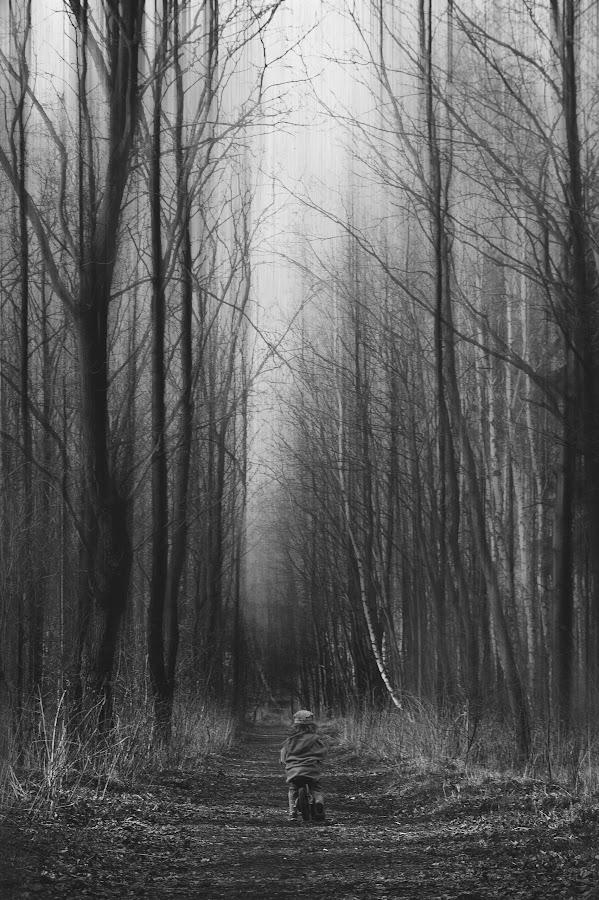 Las. by Agnieszka Pogorzałek Gross - Black & White Landscapes