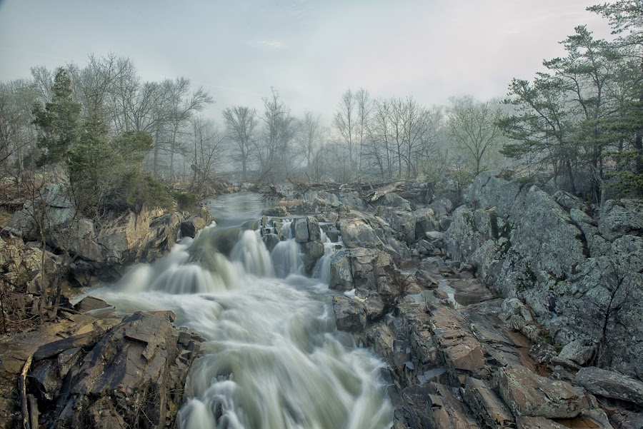 Fog lifting by Fred Walker - Landscapes Waterscapes ( great falls, fog, waterfall, maryland, washington dc, rocks, spring, potomac river, river )