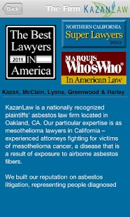 Kazan Law Firm - screenshot thumbnail