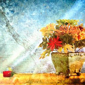 Still life by Svetlin Ivanov - Flowers Flower Arangements ( still life, flowers )