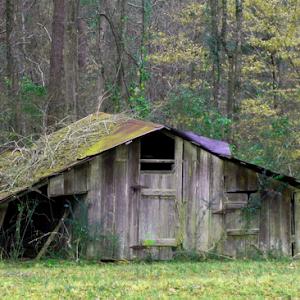 Papaw's Old Barn.jpg