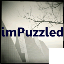 imPuzzled logo
