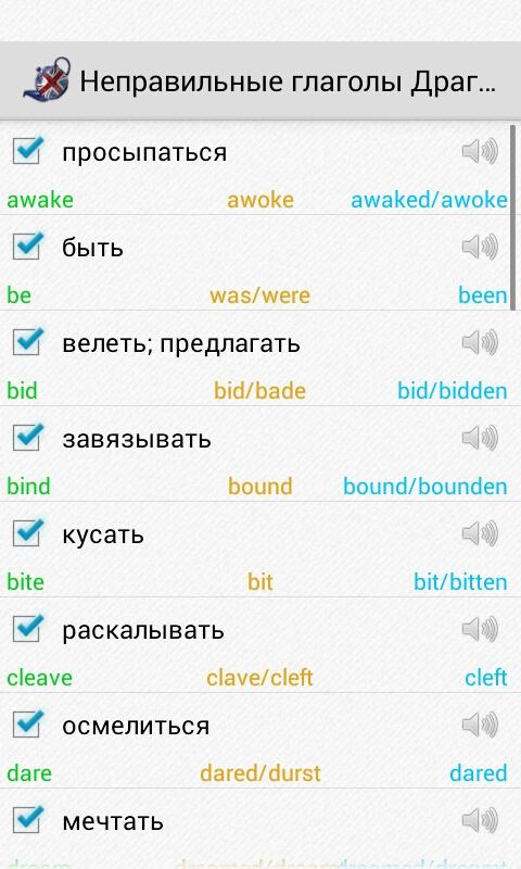 Irregular verbs Pro - screenshot