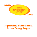 TSG Snooker logo