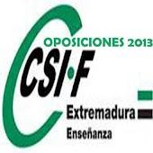 OPOSICIONEX_2013