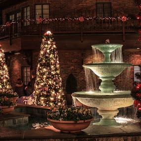 by John Herlo - Public Holidays Christmas