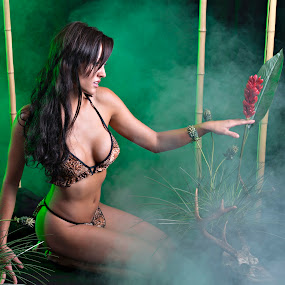 Amazon Princess by Dale Frazier - People Portraits of Women ( bamboo, passionate, bikini, purpose, pleasing, babe, sexy, forrest, greenery, pristine, fighter, passion, black, green, beautiful, amazon, warrior, princess, foggy, amazonia, fog, prize, trees, andie, leopard, tan,  )
