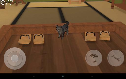 Kitty Cat Simulator