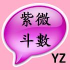 紫微斗数-行运禄忌(互动式) icon