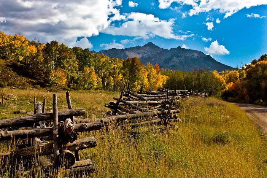 Last Dollar Road by David Short - Landscapes Forests ( fall, colorado, david lee short, mt. sneffles, telluride )