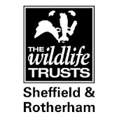 Wild Sheffield