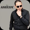 DJ Aneudy icon