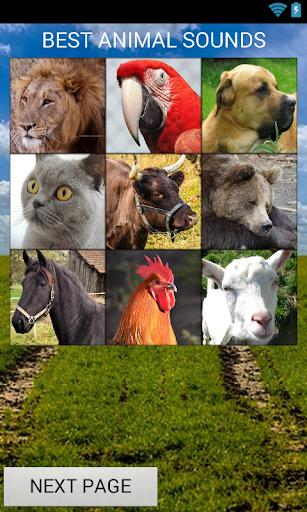 Realistic Animal Sounds