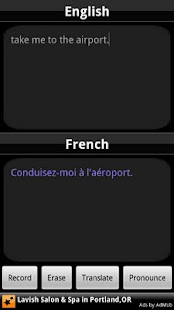 BabelFish Voice: French - screenshot thumbnail