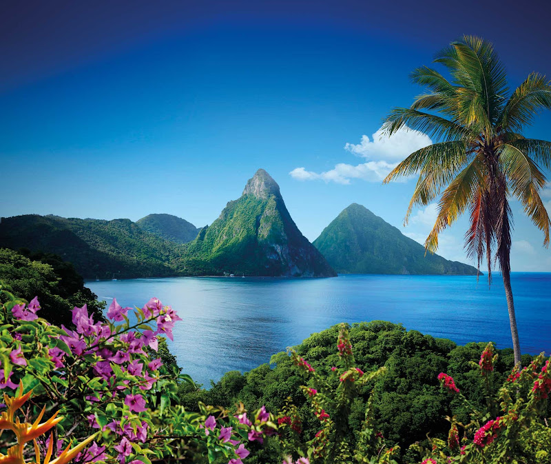 The postcard-ready Two Pitons on St. Lucia.