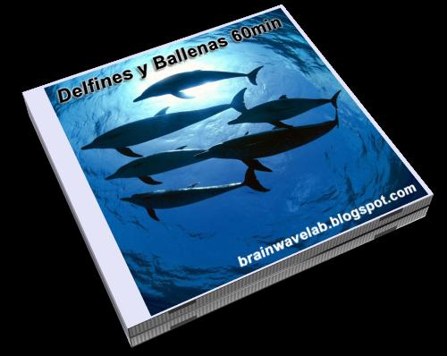 Delfines y Ballenas - WEB.png