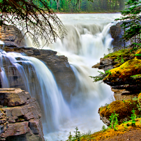 Athabasca Falls by Steve Rogers - Landscapes Waterscapes ( alberta, canada, cascade, falls, waterfall, cascades, rockies )