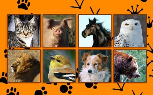 Animales Español