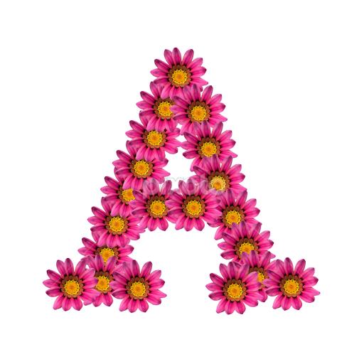 Alphabet A Single Letters Typography Pixoto