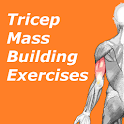 Triceps Workout - Mass Builder icon