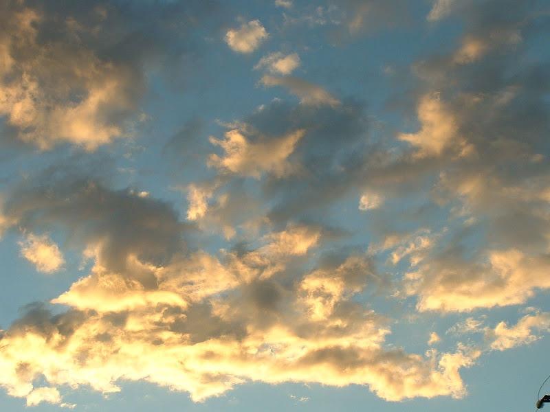 Fotos Gratis Cielos - Nubes doradas por el sol