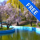 3D Spring Park Sakura Free