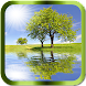 Reflection Effects Pro