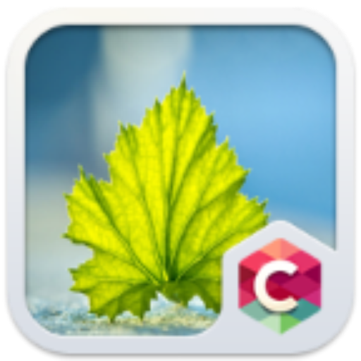 Fresh Leaf C Launcher Theme 個人化 LOGO-阿達玩APP