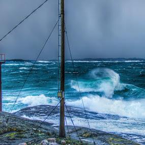 Weather by Astrid Hagland Gjerde - Landscapes Weather ( wind, wales, sea, weather, ocean, storm )