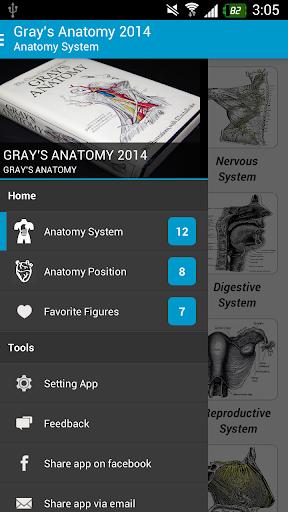 Gray's Anatomy 2014 Full Free
