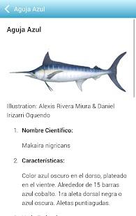 Caribbean Fishery - náhled