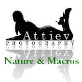 Attiev Nature and Macros