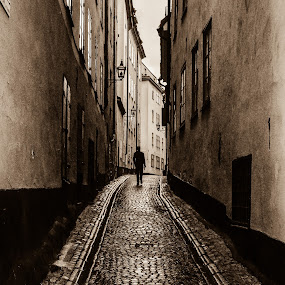 Golden oldie Alley by Ethan Fox Miles - City,  Street & Park  Street Scenes ( sweden, stockholm, street, old town, walk, people, cobblestone, man, pavement, city )