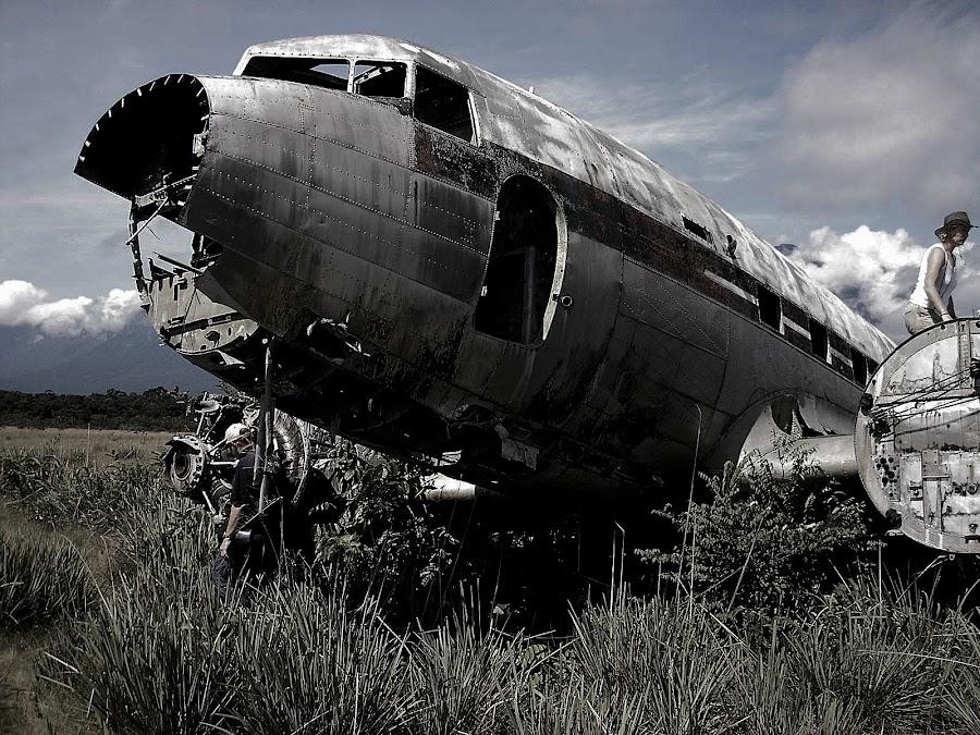 Crashed DC3, Venezuela by Gyan Fernando - Transportation Airplanes ( crashed aircraft, venezuela, dc3, vintage, aircraft, gyan fernando, travel, crashed )