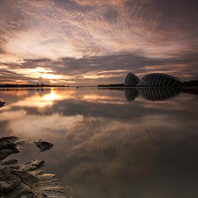 sunrise under flyesr by Sherry Zhao - Uncategorized All Uncategorized ( clouds, long exposure, sunrise, rivers, singapore )