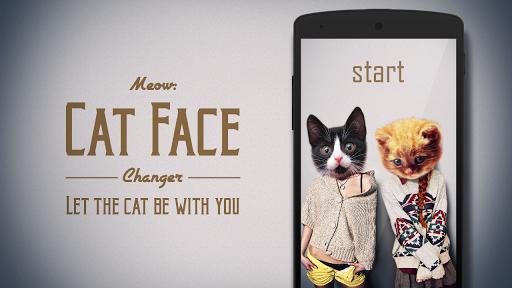 야옹 : 고양이 동물 얼굴
