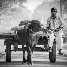 by Gaurav Madhopuri - Novices Only Street & Candid