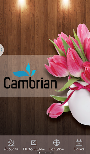 Cambrian Flower Vancouver BC