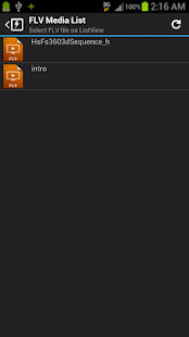 FLV Video Player For Android- screenshot thumbnail