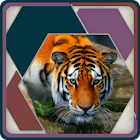 HexSaw - Wild Side icon