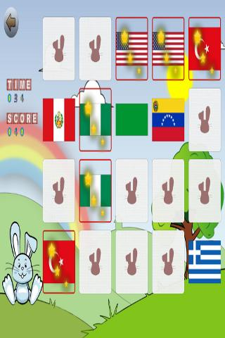 Learn Flags - screenshot
