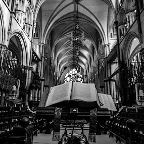 Let the sun shine in  by Lauren Carroll - Black & White Buildings & Architecture ( detail, church, black and white, architecture, bible,  )