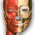 Anatomy Learning - 3D Atlas file APK for Gaming PC/PS3/PS4 Smart TV