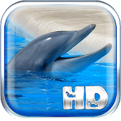 Dolphins Live Wallpaper HD