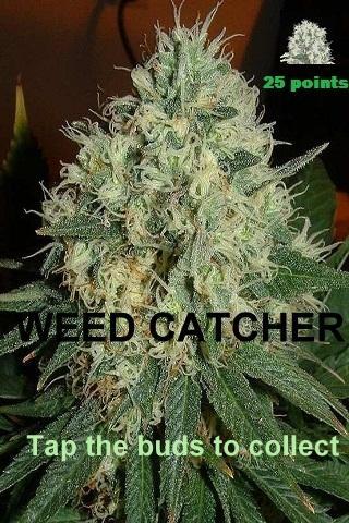 【免費街機App】Weed Catcher-APP點子