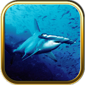 Under the Sea Puzzle Games