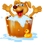 Animals Memory & Cards Game icon