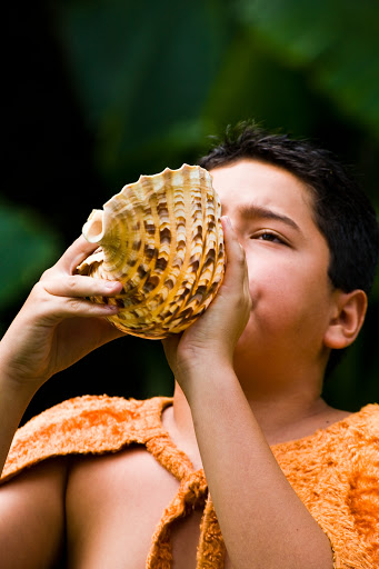 pu-conch-Hawaii - A young man sounds the pu, which traditionally announces the arrival of the royal court in Hawaii.